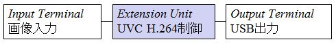 Function Topology - UVC for H.264